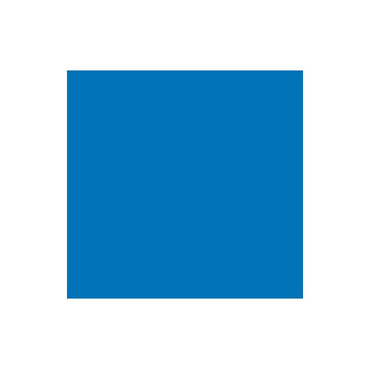 services-tours-puerto-vallarta-trasnportation